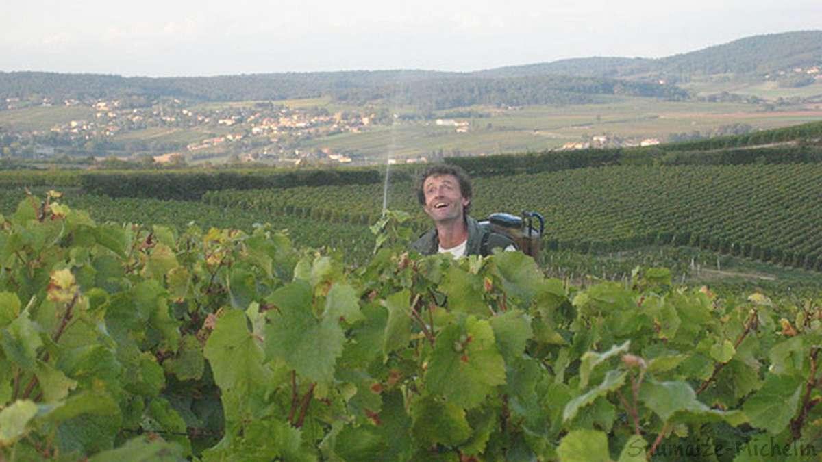 Traitement de la vigne par Roger Saumaize